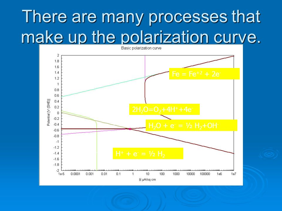 There are many processes that make up the polarization curve.