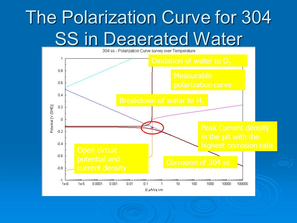 The Polarization Curve for 304 SS in Deaerated Water
