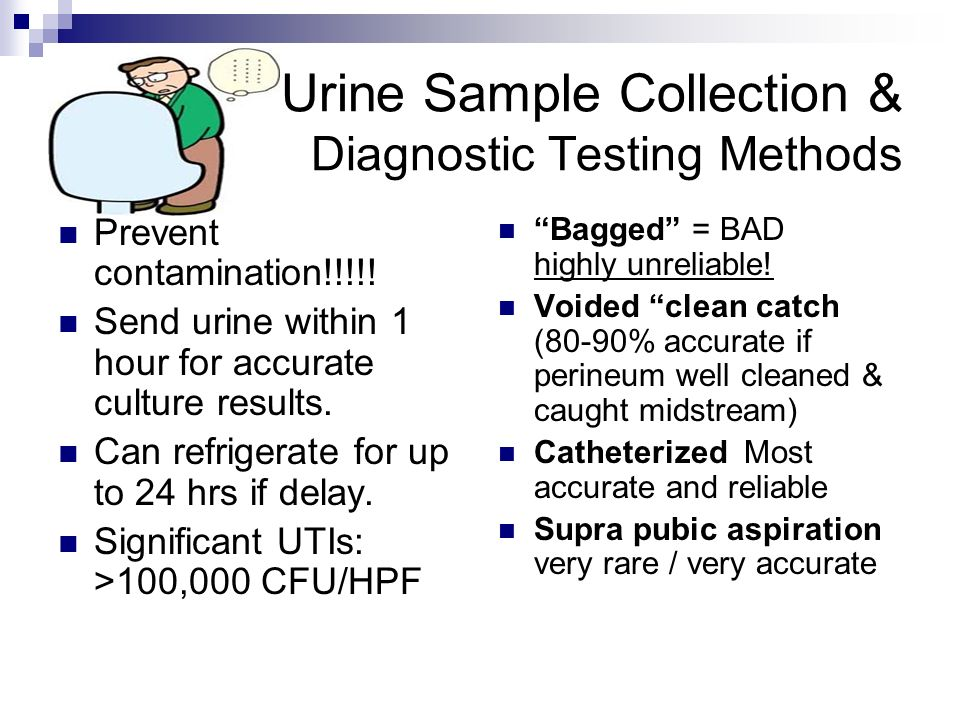 Urine Sample Collection & Diagnostic Testing Methods