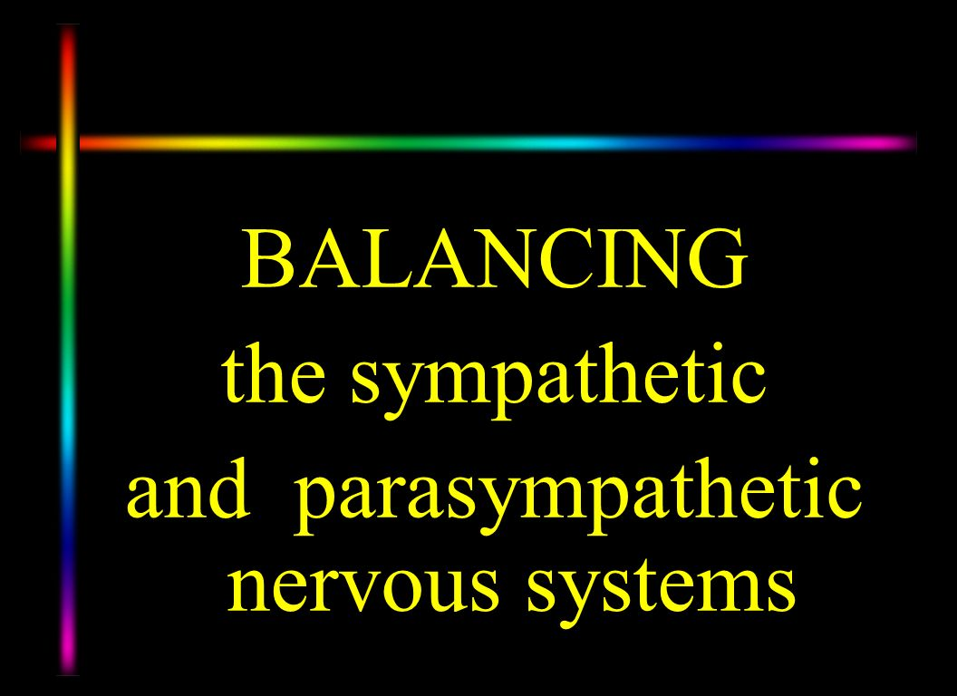 and parasympathetic nervous systems