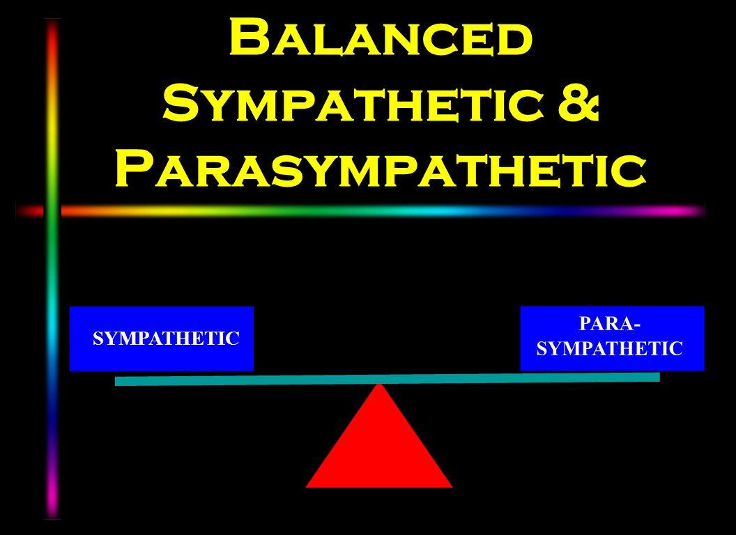 Balanced Sympathetic & Parasympathetic