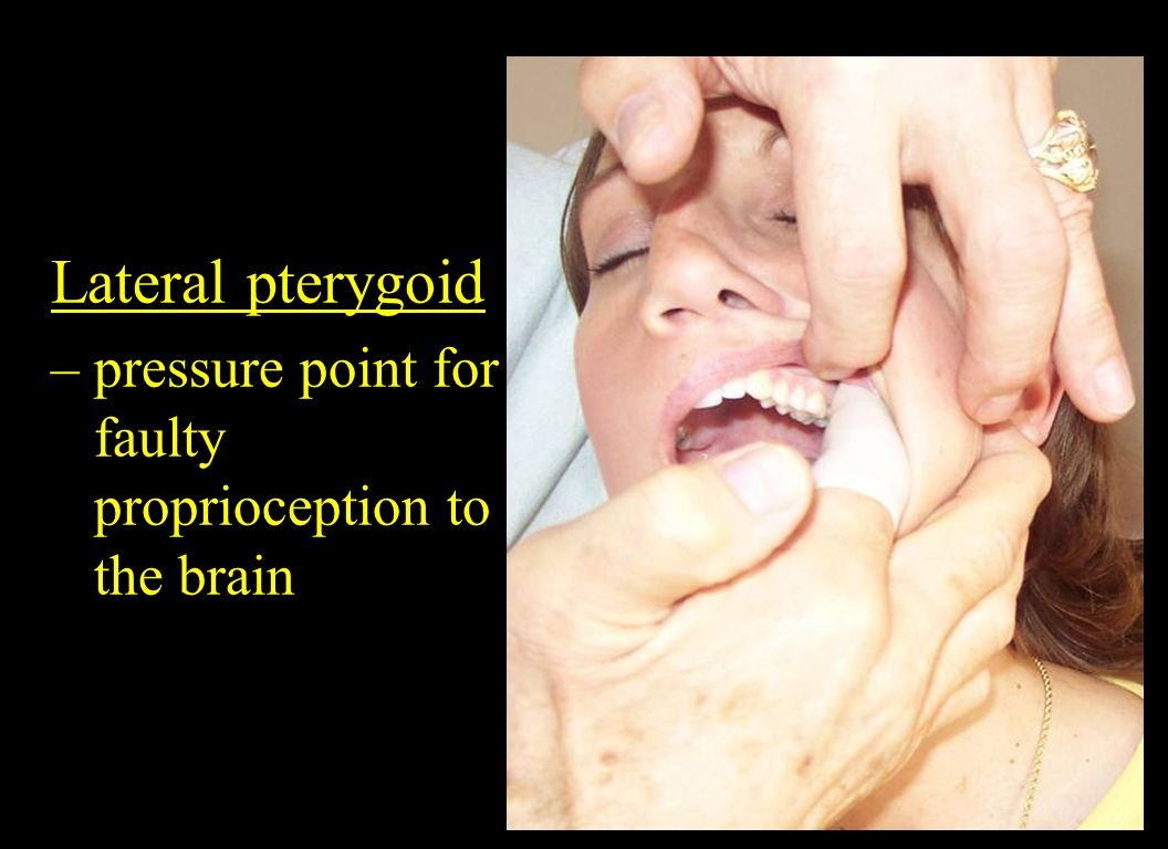 Lateral pterygoid – pressure point for faulty proprioception to the brain.