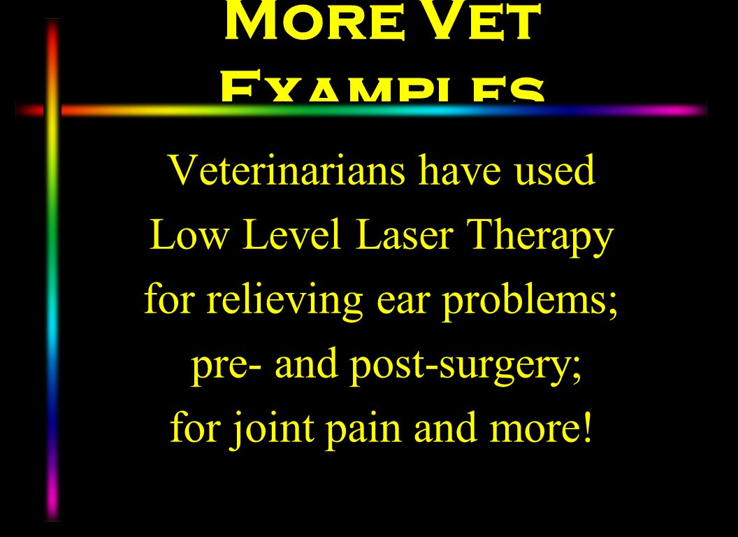 More Vet Examples Veterinarians have used Low Level Laser Therapy