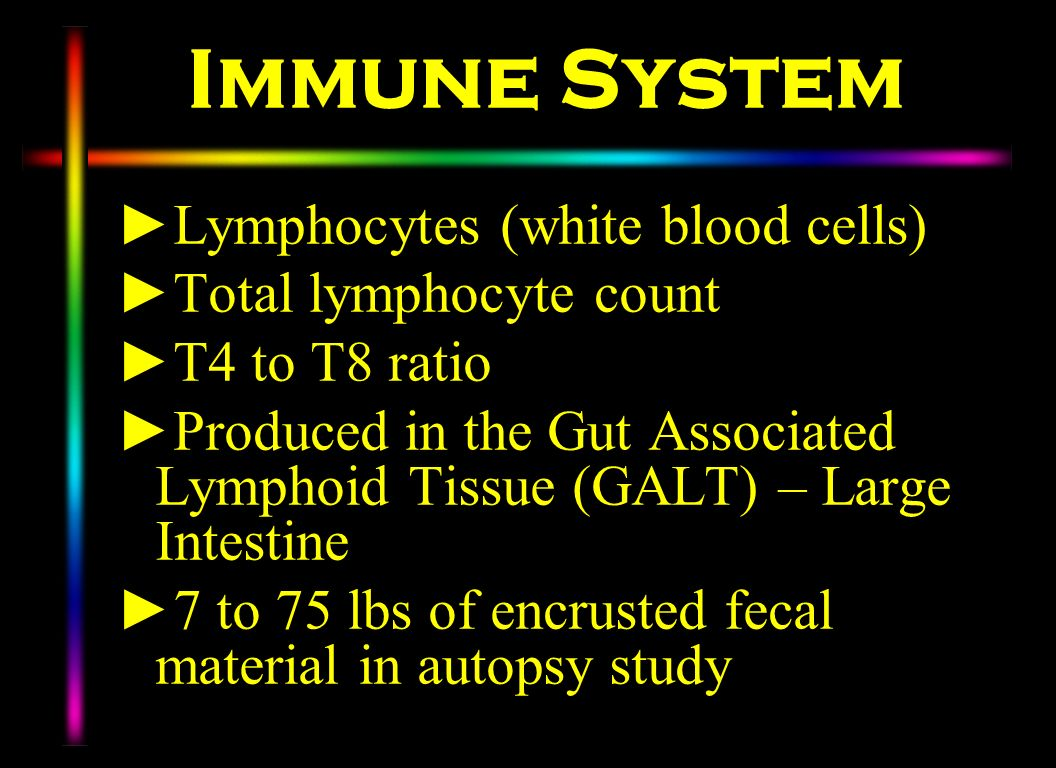 Immune System Lymphocytes (white blood cells) Total lymphocyte count