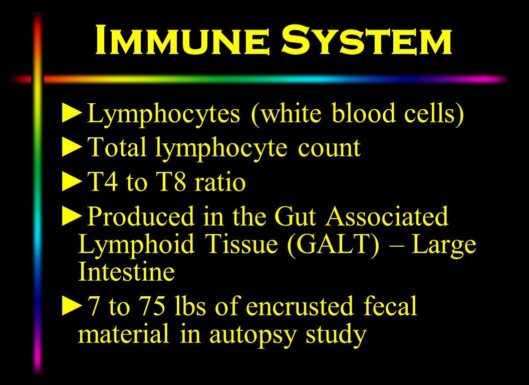Immune System Lymphocytes (white blood cells) Total lymphocyte count