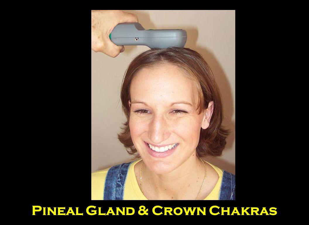 Pineal Gland & Crown Chakras