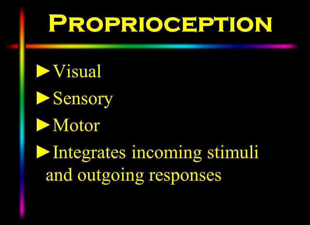 Proprioception Visual Sensory Motor