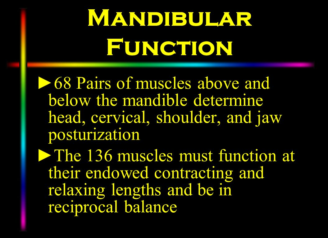 Mandibular Function 68 Pairs of muscles above and below the mandible determine head, cervical, shoulder, and jaw posturization.