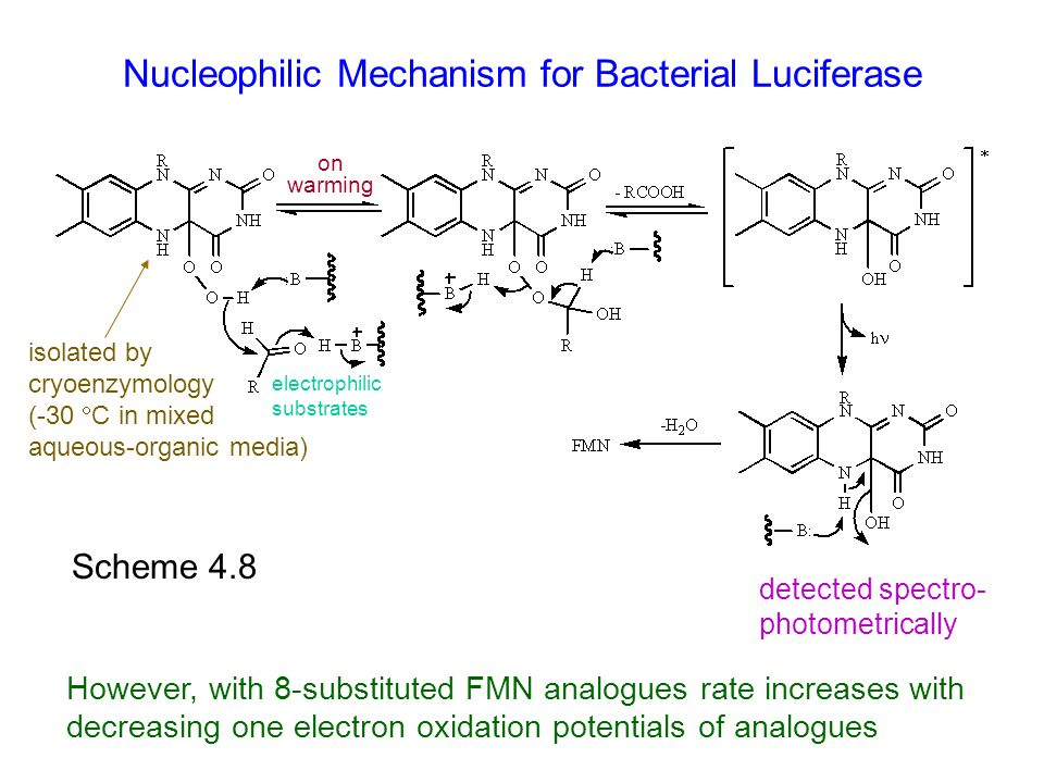 Nucleophilic Mechanism for Bacterial Luciferase