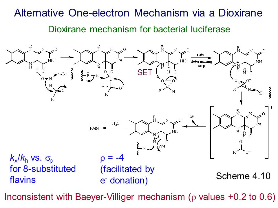 Dioxirane mechanism for bacterial luciferase