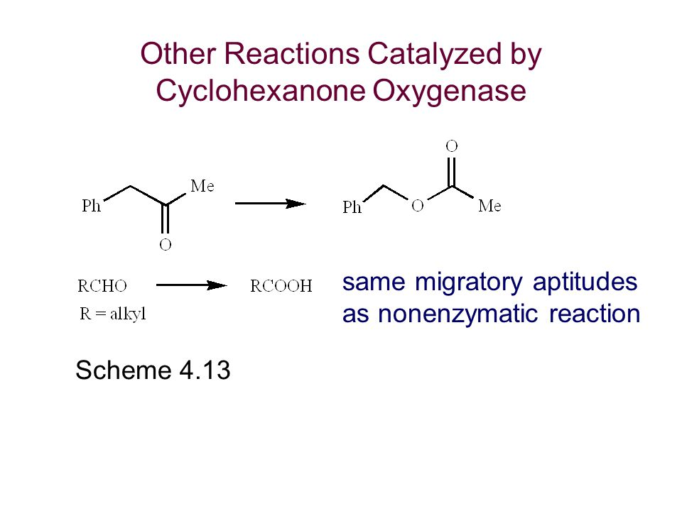 Other Reactions Catalyzed by Cyclohexanone Oxygenase