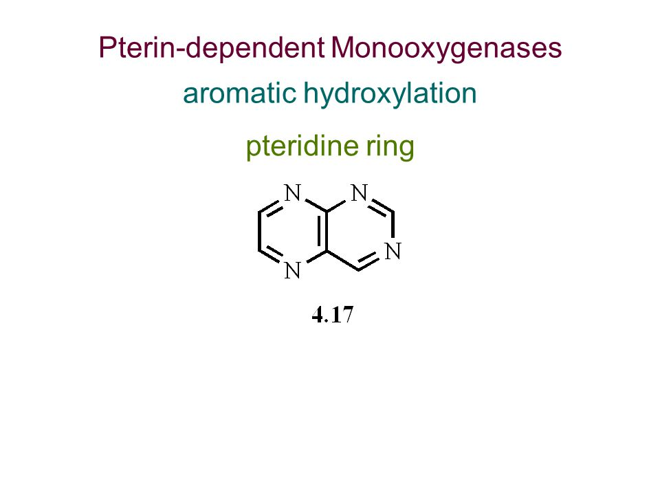 Pterin-dependent Monooxygenases aromatic hydroxylation