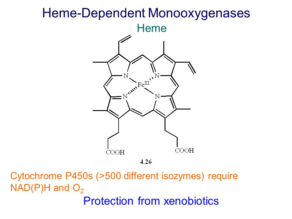 Heme-Dependent Monooxygenases