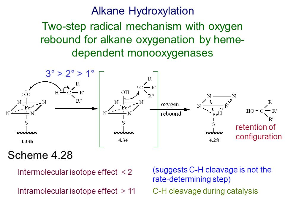 Alkane Hydroxylation Two-step radical mechanism with oxygen rebound for alkane oxygenation by heme-dependent monooxygenases.