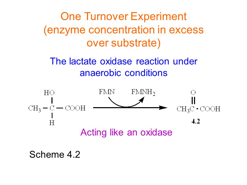 The lactate oxidase reaction under anaerobic conditions