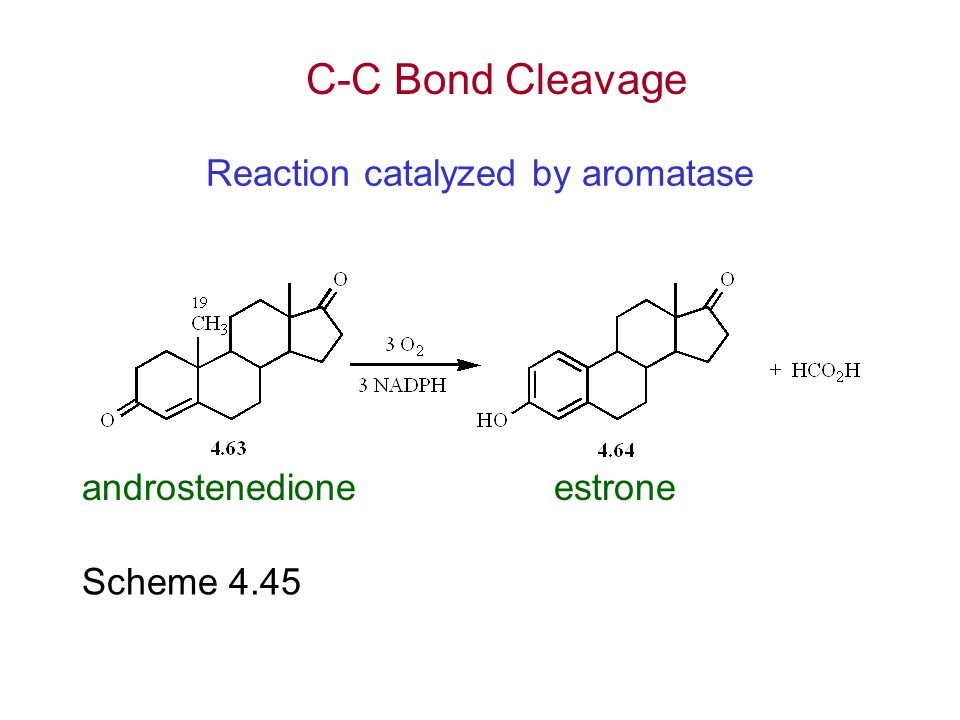 Reaction catalyzed by aromatase