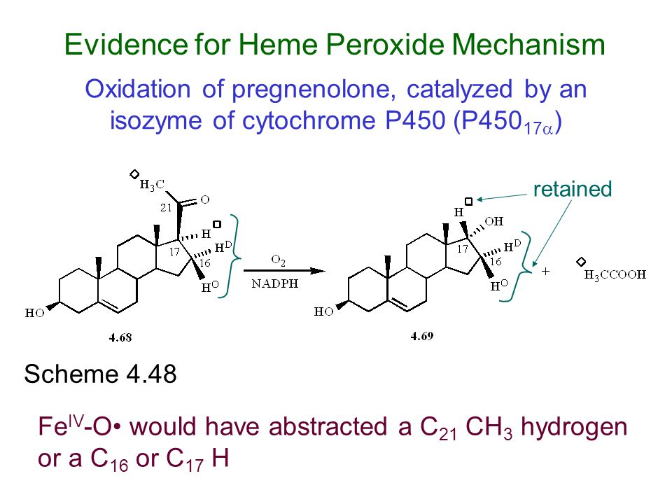 Evidence for Heme Peroxide Mechanism