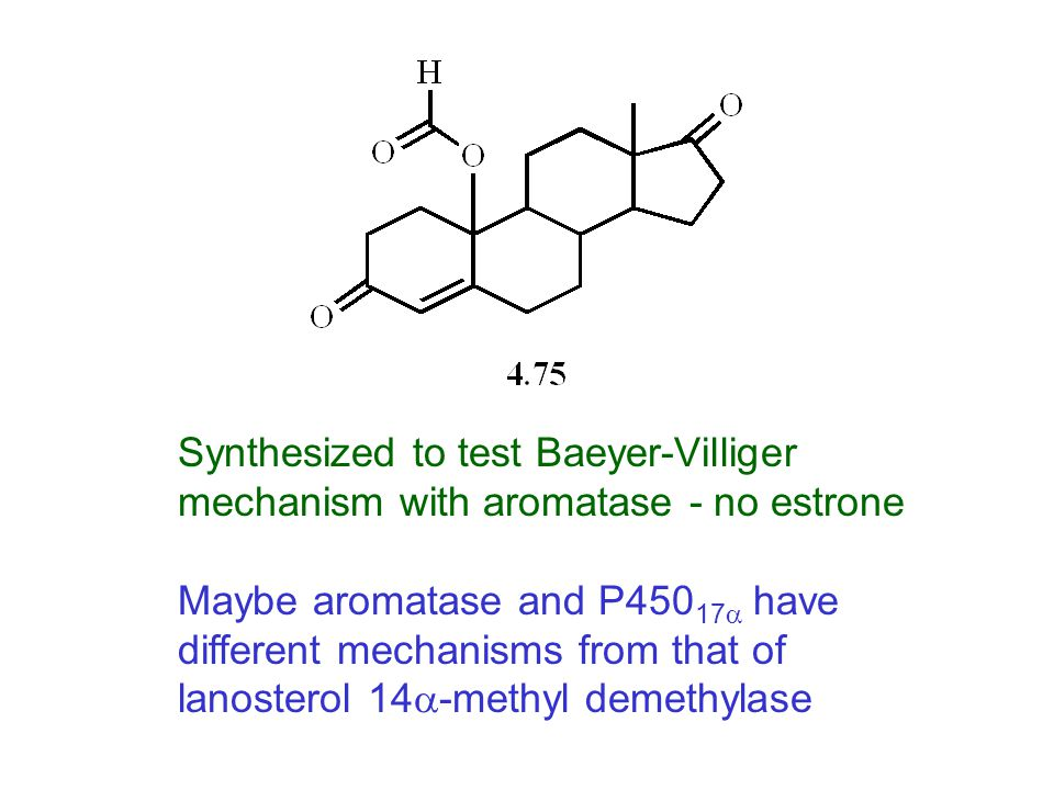 Synthesized to test Baeyer-Villiger mechanism with aromatase - no estrone