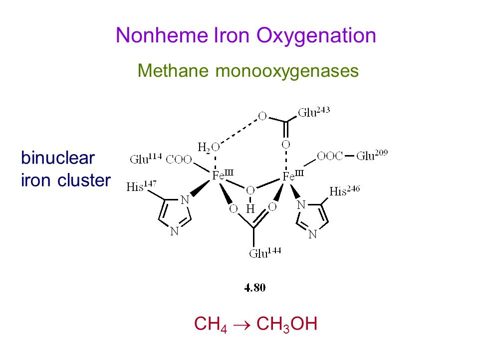 Nonheme Iron Oxygenation