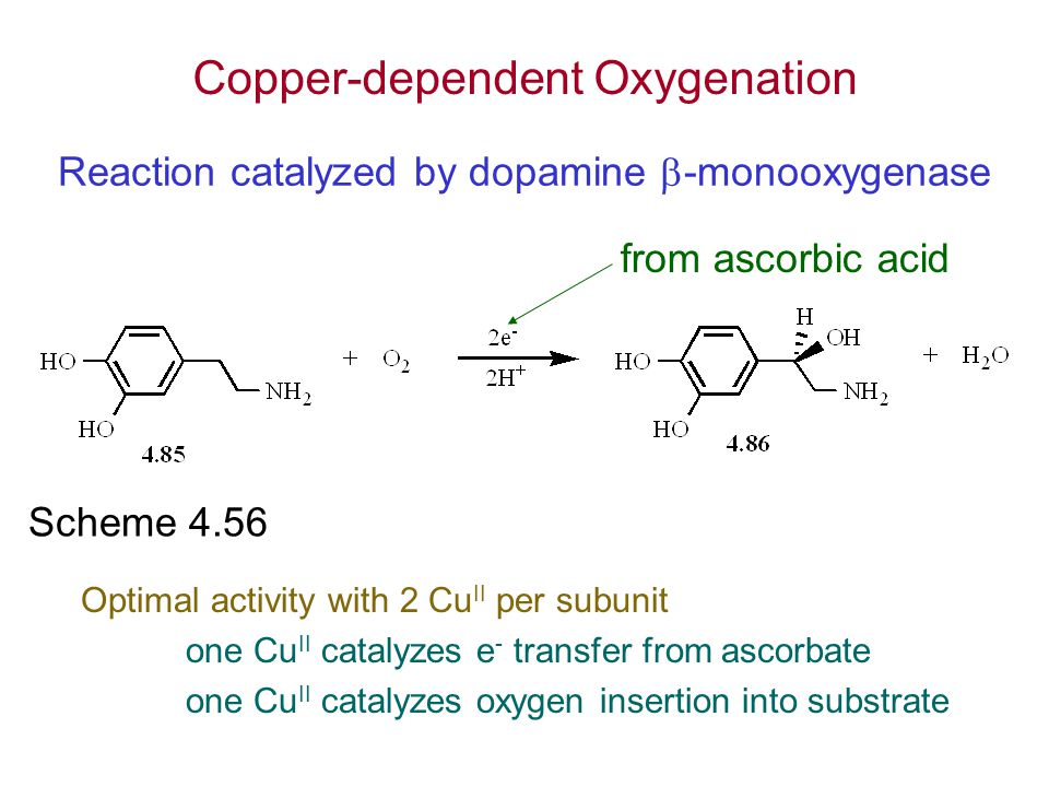 Reaction catalyzed by dopamine -monooxygenase