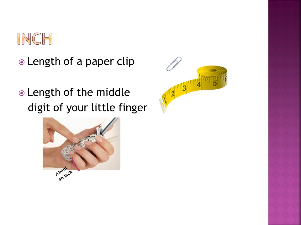 Inch Length of a paper clip Length of the middle