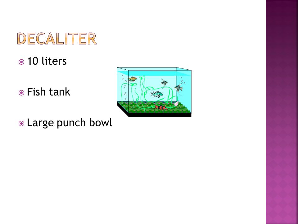 decaliter 10 liters Fish tank Large punch bowl