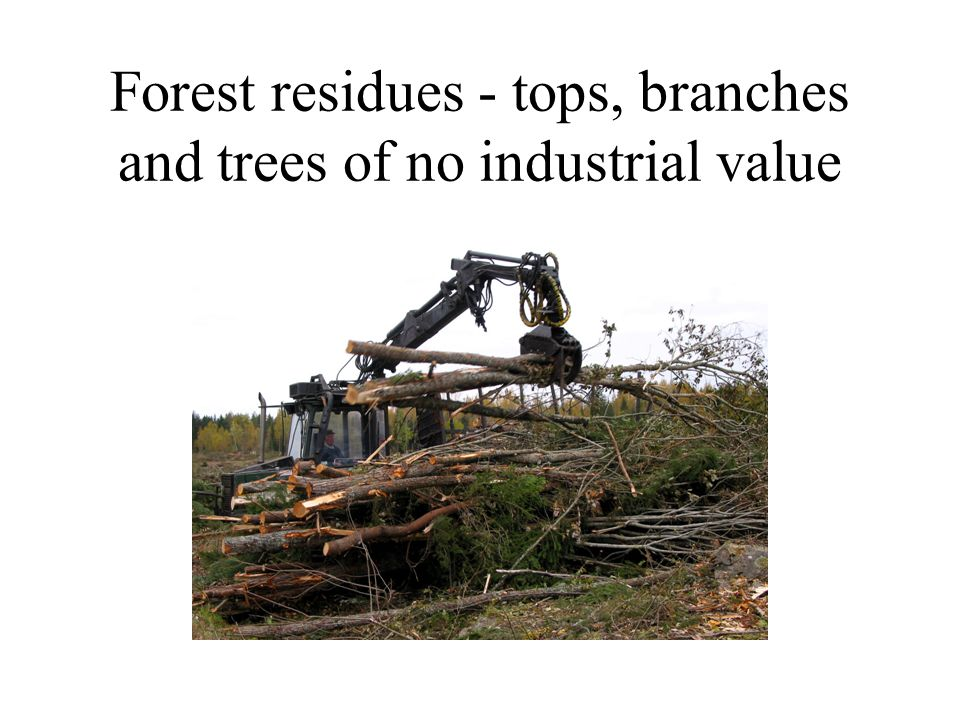 Forest residues - tops, branches and trees of no industrial value