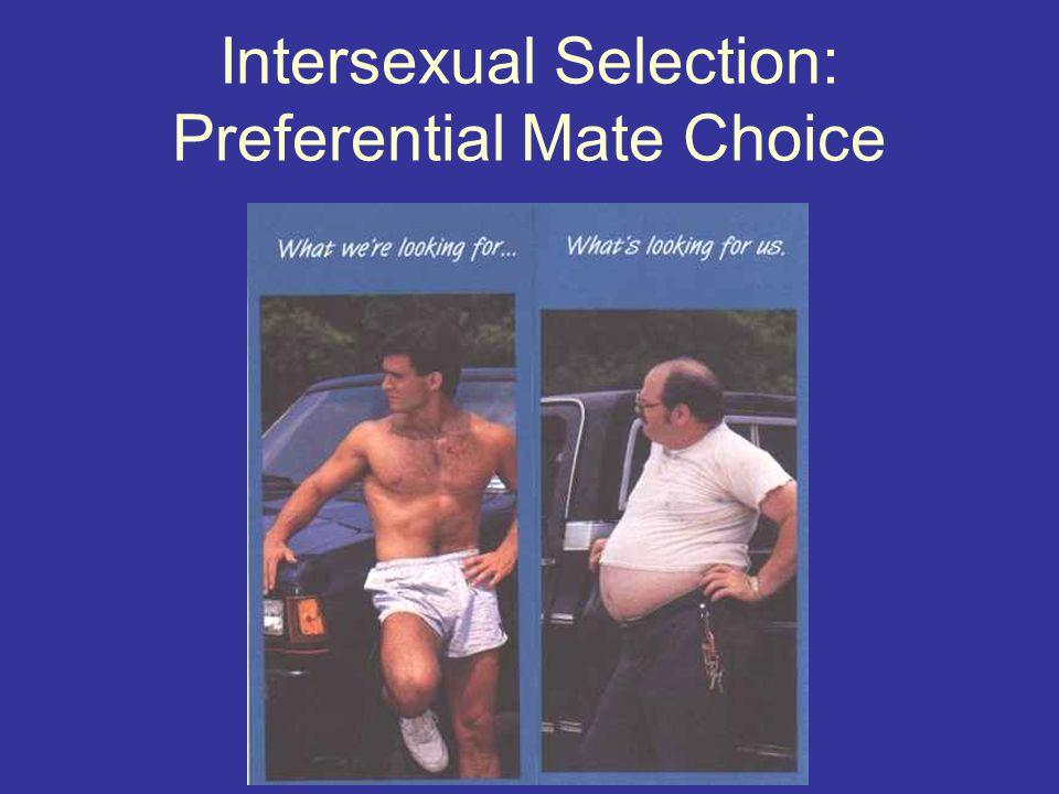 Intersexual Selection: Preferential Mate Choice