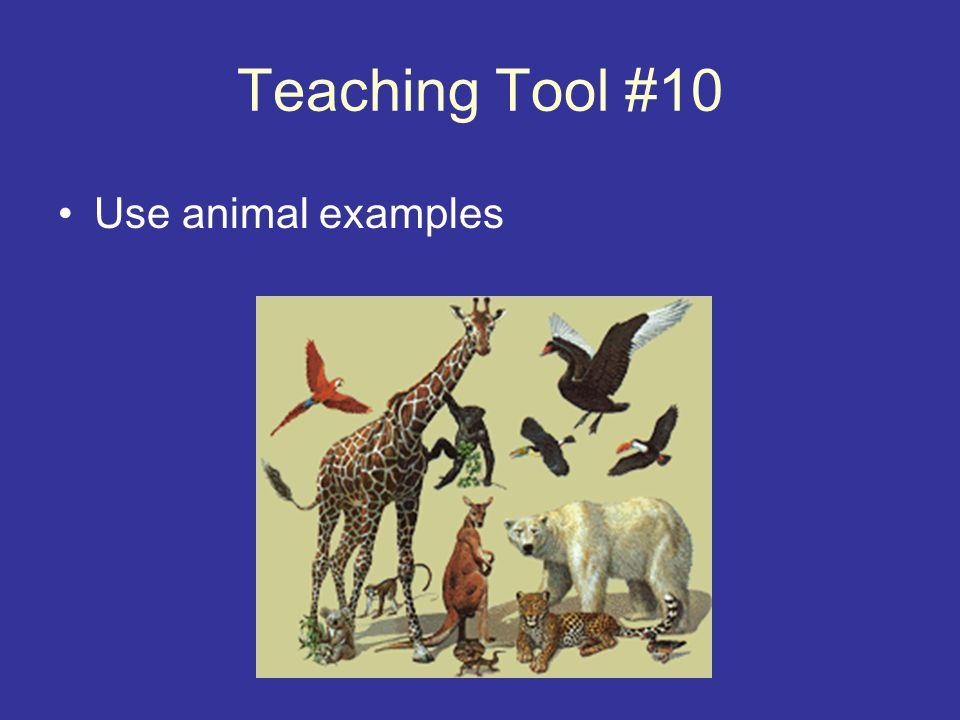 Teaching Tool #10 Use animal examples