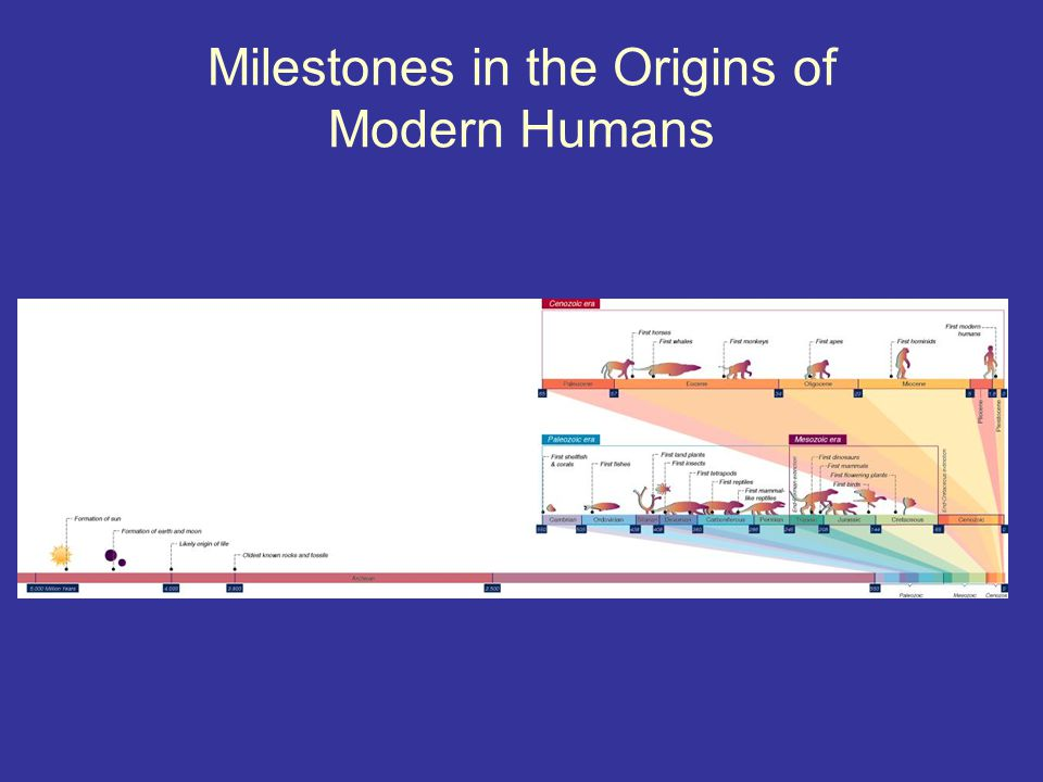 Milestones in the Origins of Modern Humans