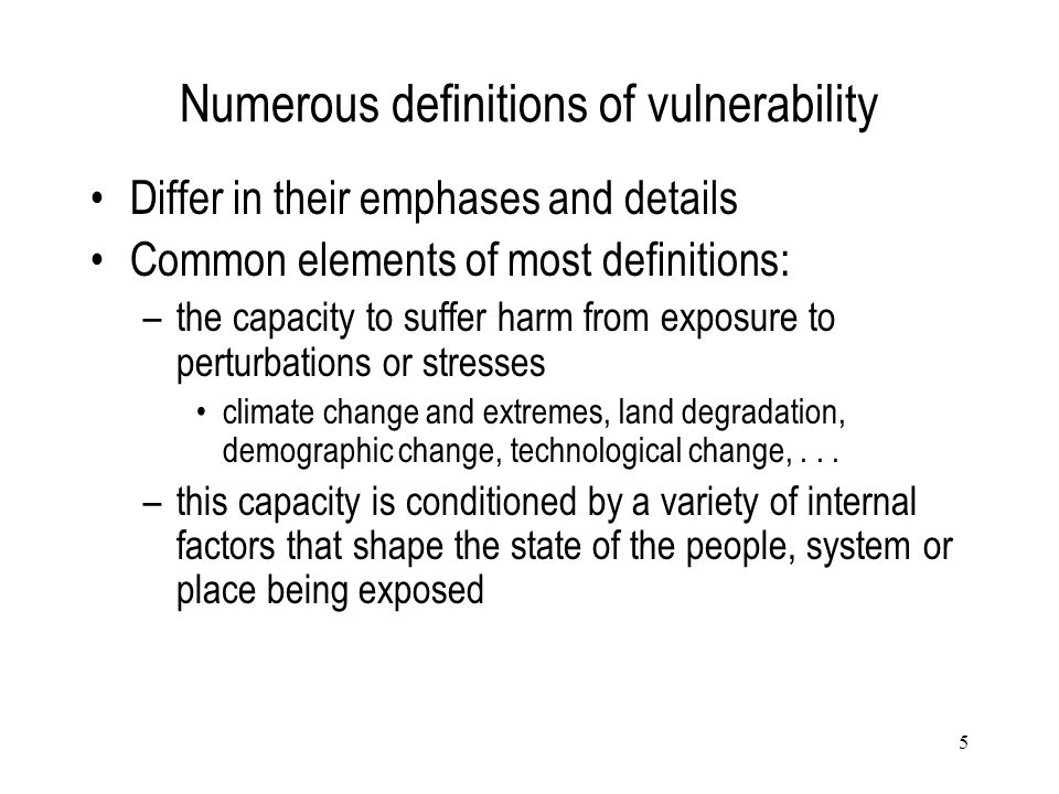 Numerous definitions of vulnerability