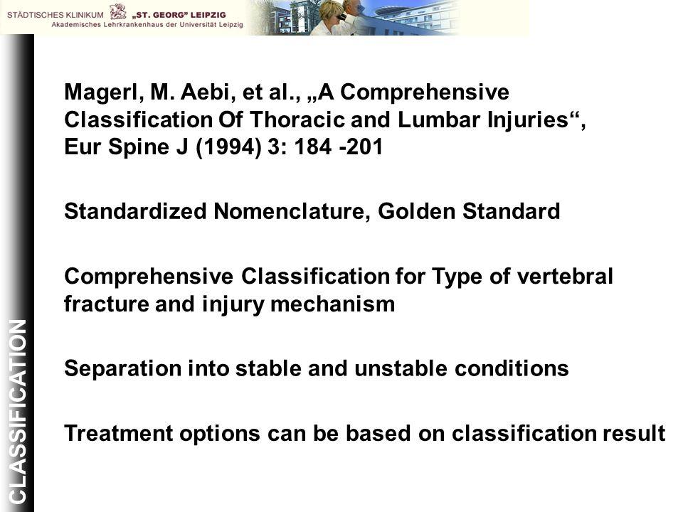 "Magerl, M. Aebi, et al., ""A Comprehensive"