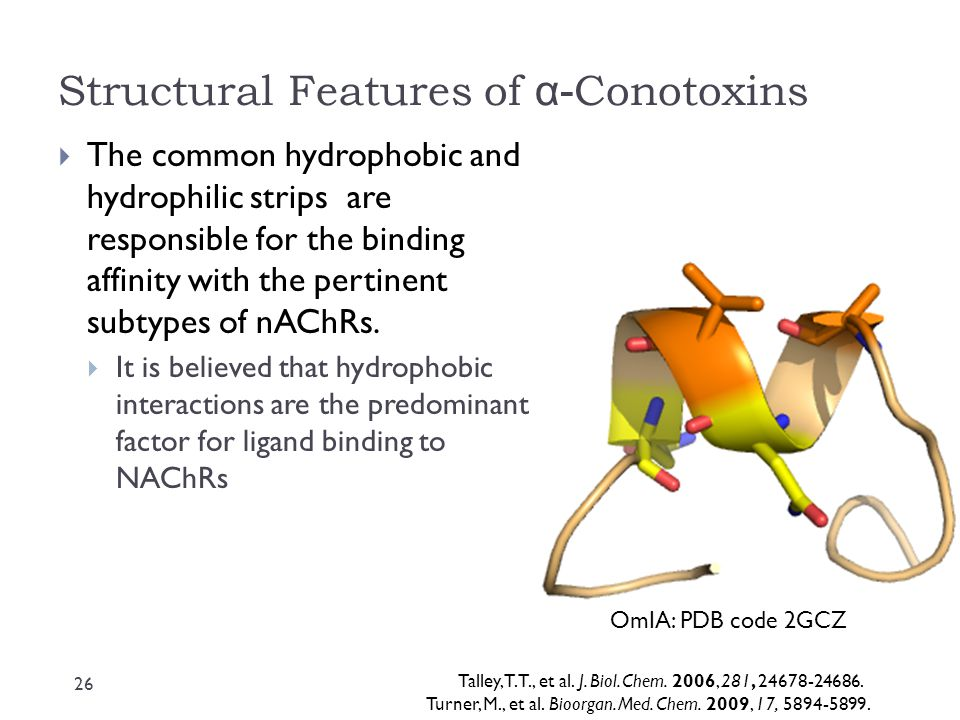 Structural Features of α-Conotoxins