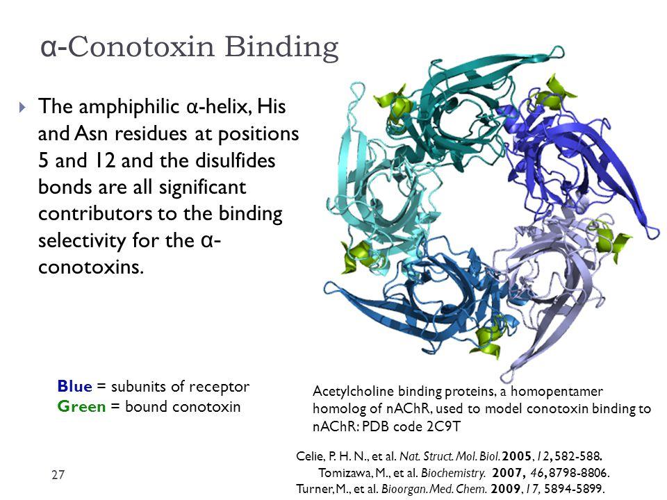 α-Conotoxin Binding