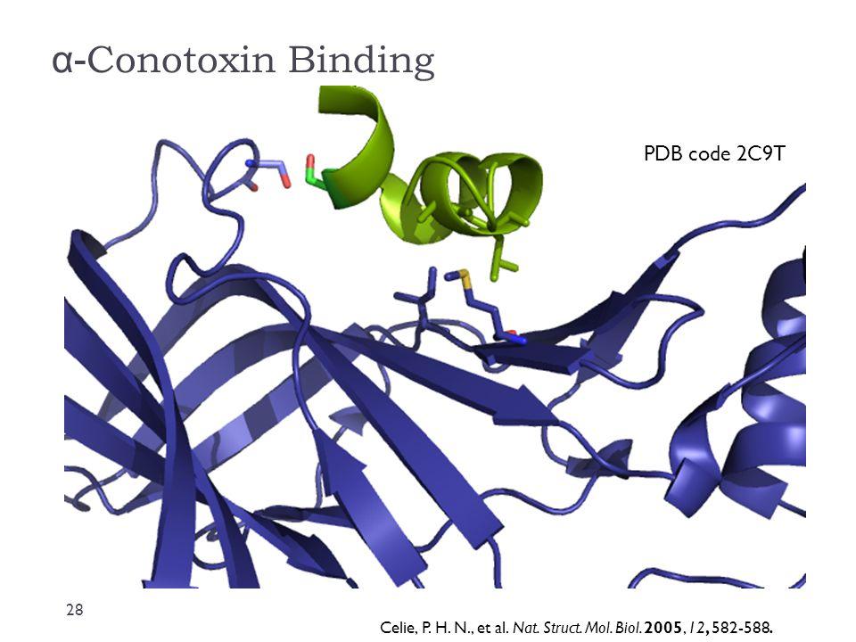 α-Conotoxin Binding PDB code 2C9T