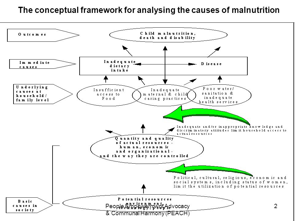 The conceptual framework for analysing the causes of malnutrition