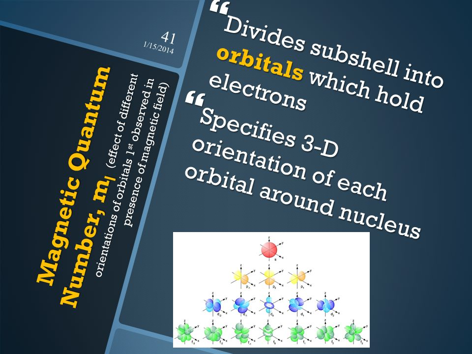 Divides subshell into orbitals which hold electrons