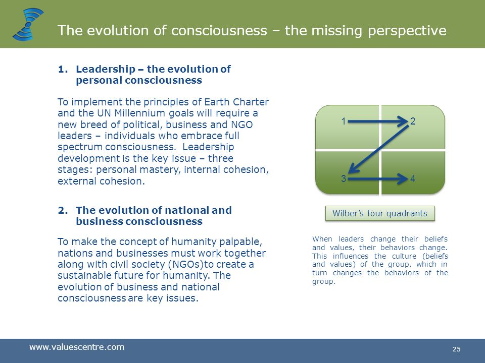 The evolution of consciousness – the missing perspective