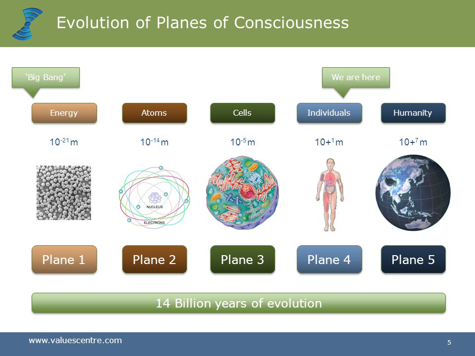 Evolution of Planes of Consciousness