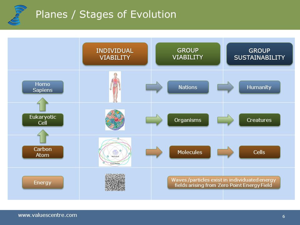 Planes / Stages of Evolution