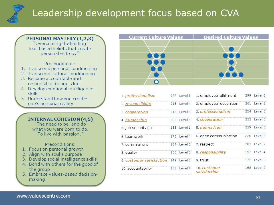 Leadership development focus based on CVA
