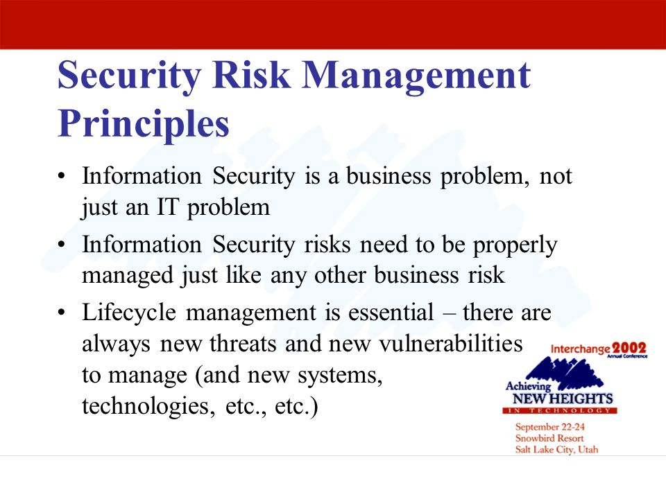 Security Risk Management Principles