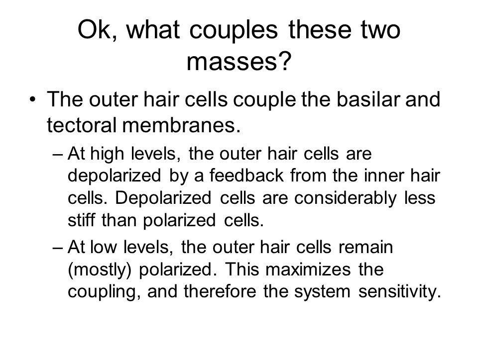 Ok, what couples these two masses