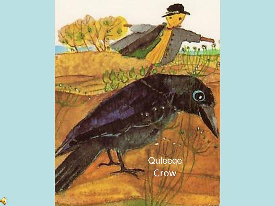 Quleeqe Crow