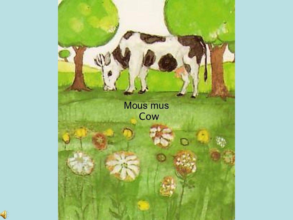 Mous mus Cow