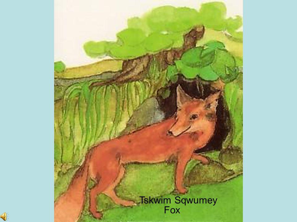 Tskwim Sqwumey Fox