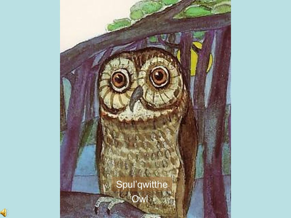 Spul'qwitthe Owl
