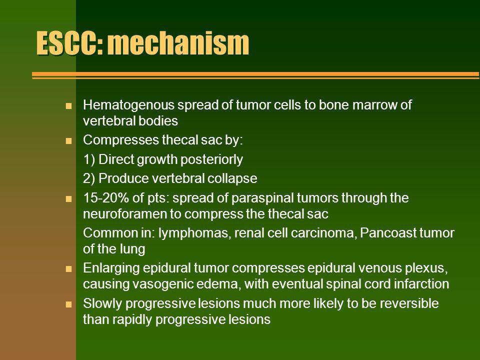 ESCC: mechanism Hematogenous spread of tumor cells to bone marrow of vertebral bodies. Compresses thecal sac by: