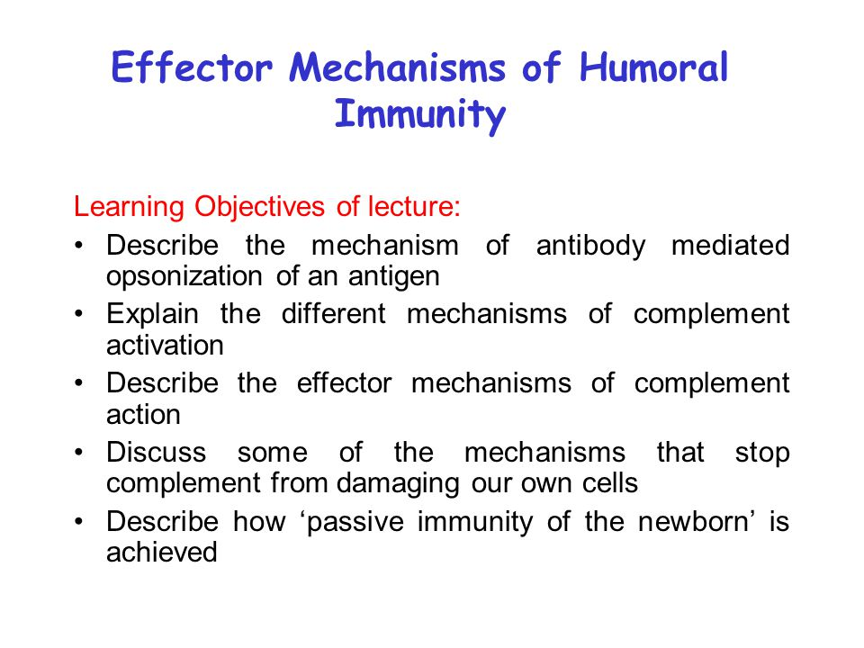 Effector Mechanisms of Humoral Immunity