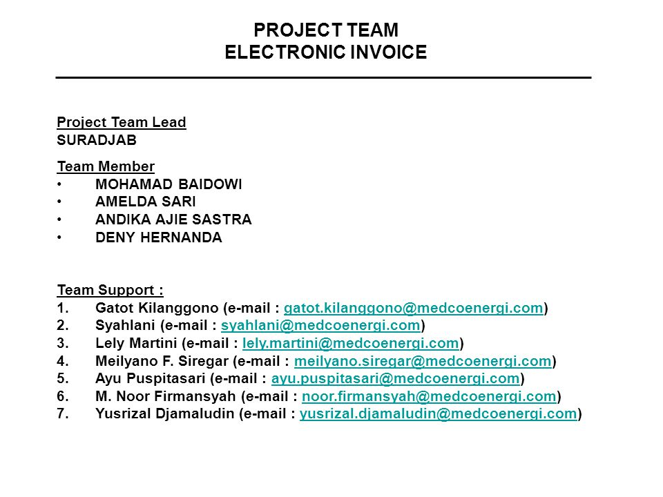 PROJECT TEAM ELECTRONIC INVOICE